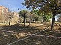 El parque Pavones Norte de Moratalaz se convertirá en un espacio para toda la ciudadanía 01.jpg