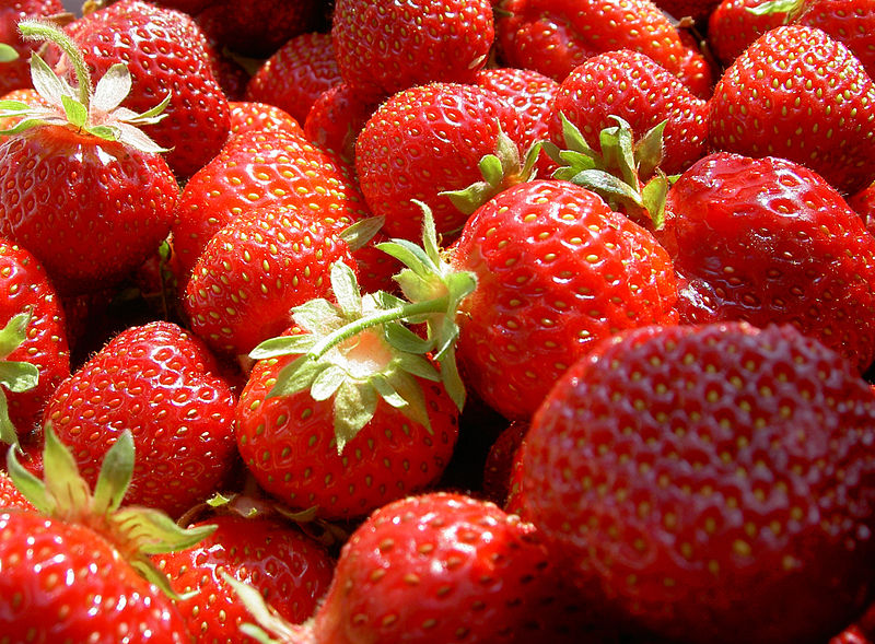 Erdbeeren-WJP-1.jpg