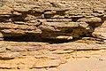 Erosion sand Les Portes-en-Ré Charente Maritime.jpg
