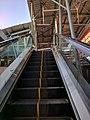 Escalator in dawn.jpg