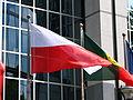 European Flags (4627299234).jpg