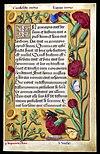 Evangile Jean Grandes Heures Anne de Bretagne.jpg