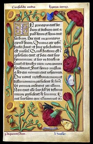 Grandes Heures d'Anne de Bretagne, évangile de Jean