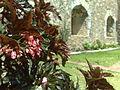 Ex Convento de Santiago Cuilapan 22.jpg