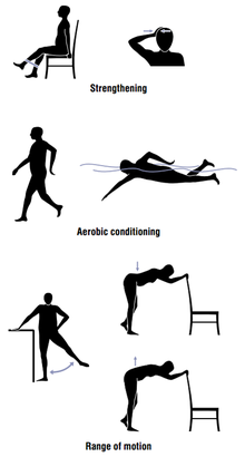 Illustration of example strengthening, aerobic conditioning, and range of motion exercises