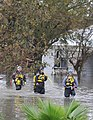 FEMA - 38327 - FEMA US&R team searching in a Texas neighborhood.jpg
