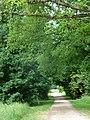 FFM Niddapark Gehoelzweg 02.jpg