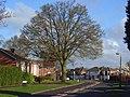 Fairwater Drive, Woodley - geograph.org.uk - 1253709.jpg