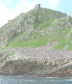 Farallon Light.png