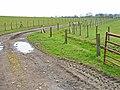 Farm road near Holdforth Farm, Fishburn - geograph.org.uk - 156068.jpg