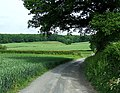 Farmers' Road through Fields, Shropshire - geograph.org.uk - 456379.jpg