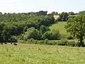 Farmland below Latchetts, Near DaneHill, East Sussex - geograph.org.uk - 28307.jpg