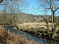 Farmland over the Afon Artro - geograph.org.uk - 1043784.jpg