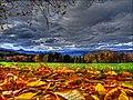 Fehren in autumn - panoramio.jpg