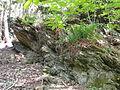 Felsen in der Dehl (Hoch-Weisel) 01.JPG