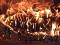 Feuer in einem Holzofen.JPG
