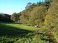 Field beside Wastor Wood - geograph.org.uk - 274233.jpg