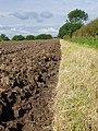 Field near Castle Hill - geograph.org.uk - 881310.jpg