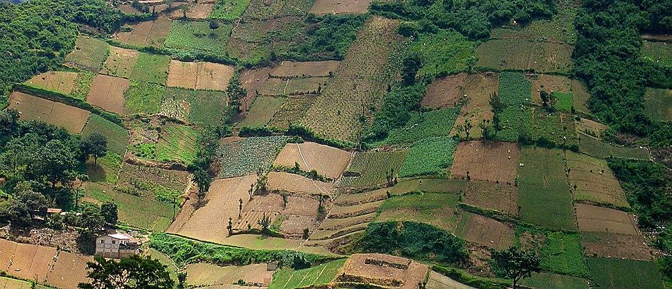 Fields in Quetzaltenango