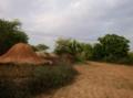 Fieldsin Pakistan.png