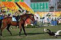 Final do pentatlo moderno dos Jogos Olímpicos Rio 2016 (29018545841).jpg
