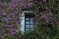 Finestra con cornice fiorita (24452232612).jpg