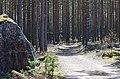 Finland - panoramio (25).jpg