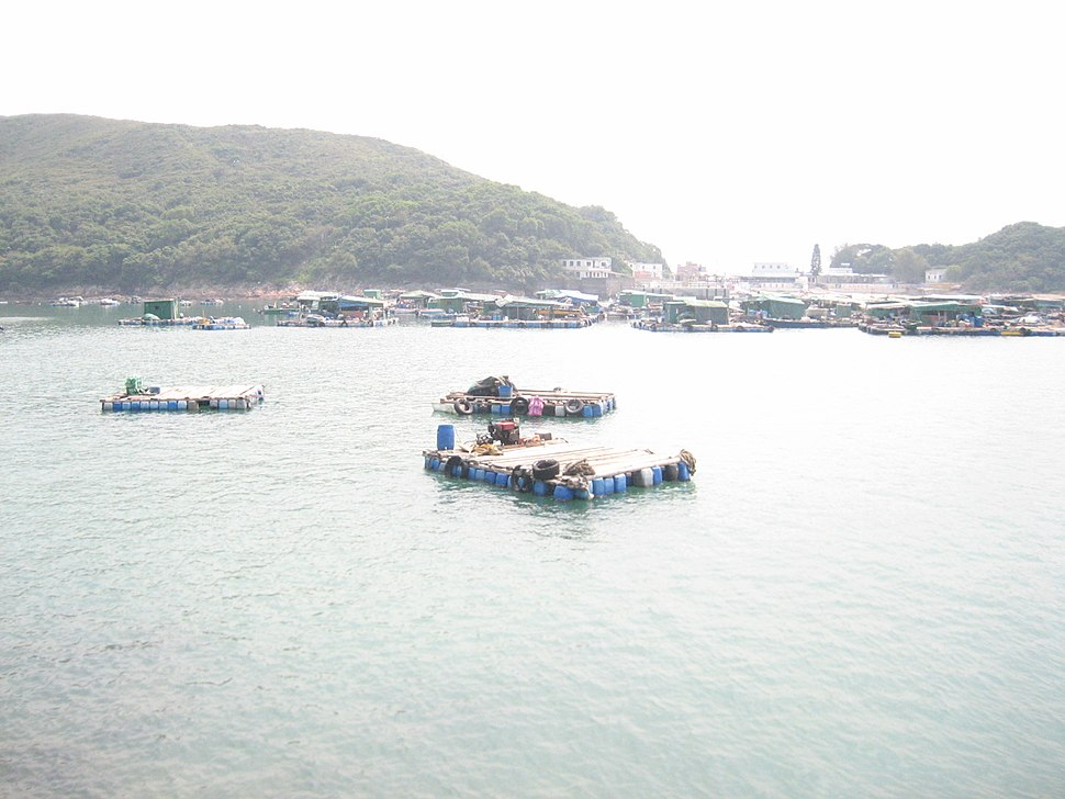 Fish farming in High Island, Hong Kong