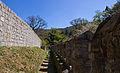 Flickr - Laenulfean - castle walk.jpg