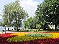 Flowers (7566227568).jpg