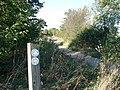 Footpath near West Mill - geograph.org.uk - 245096.jpg