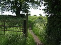 Footpath to Ashmore Park - geograph.org.uk - 454085.jpg
