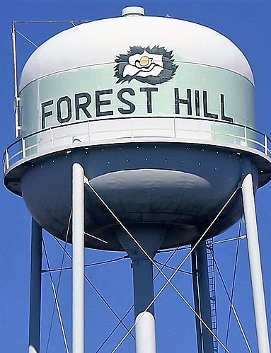 Forest Hill chiropractor