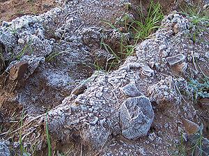 Image of 霜: http://ja.dbpedia.org/resource/霜