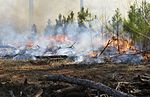 Fueling the Fire, Controlled burn strengthens local eco system 160204-F-VO743-010.jpg