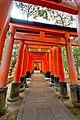 Fukakusa Yabunouchicho, Fushimi Ward, Kyoto, Kyoto Prefecture 612-0882, Japan - panoramio (7).jpg