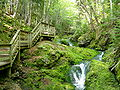 Fundy National Park of Canada 9.jpg