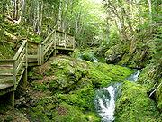 Trilha próximo à queda d´agua no Parque Nacional Fundy.