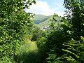 GORNI PUT RESTELICA - panoramio.jpg
