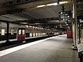 Gare RER Pont Garigliano Paris 1.jpg