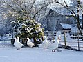 Geese In the snow at Kirkandrews on Eden - geograph.org.uk - 1695163.jpg