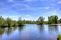 Gfp-wisconsin-view-up-the-peshtigo-river.jpg