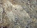 Glacially striated boulder (Wright Run Creek, Dublin, Ohio, USA) (31461415887).jpg