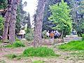 Gran Parc de Tirana.jpg