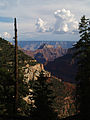 Grand Canyon Widforss trail. 01.jpg