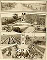 Great San Antonio, the city of destiny and of your destination (1918) (14782496134).jpg