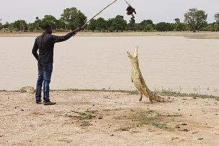 Tourism in Burkina Faso