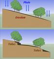 Haies erosion.png