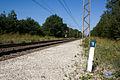 Halte Fontainebleau - Forêt IMG 8527.jpg