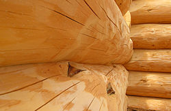 Close-up of new logs in interior house wall